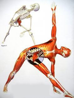 Low Back - 'Every Morning' Pain - and Deep Muscle (Psoas, etc.) Stretches