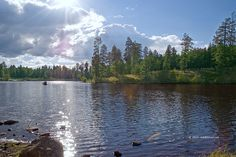 This lake is a great place to camp and fish and the fog that lays around it and the surrounding area in the mornings is surreal! ..little bear lake ..arizona ..white mountains ..pinetop ..az
