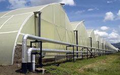 Il geotermico per i paesi in via di sviluppo