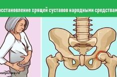 Restoration of cartilage joints folk remedies – Fitness Fitness Diet, Health Fitness, 40 Years, Baby Knitting, The Cure, Health Care, Spin, Family Guy, Exercise