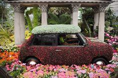 Mini Cooper cubierto de flores durante el Chelsea Flower Show en Londres.