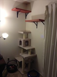 Cat corner tree house with shelves. To our disappointment the tree house we purchased was not very tall for our furry climbing friend. So we improved the height by building, painting, and installing the newly made shelves on the wall to give our cat a most desirable perch. All of the items used to build the shelves came from stores such as Lowes or Home Depot. A great DIY project for the weekend!