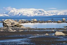 Cook Inlet shoreline