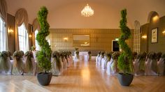 Bristol Zoo - Weddings with a Wow