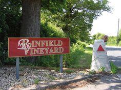 Binfield Vineyard
