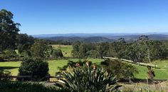 #Daytrips #from #Toowoomba – #Ravensbourne #National #Park