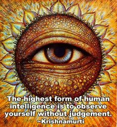The highest form of human intelligence is to observe yourself without judgement   Anonymous ART of Revolution