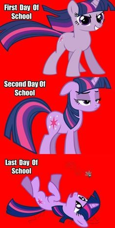 My Little Brony - Page 2 - Friendship is Magic - my little pony, friendship is magic, brony - Cheezburger. Wow!