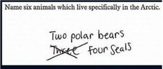 Test answers from children.