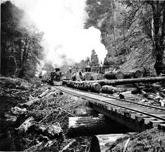 Loading logs onto logging railroad, Wynooche Timber Co., Wynooche Valley, Washington, n.d. :: Industries and Occupations Photographs
