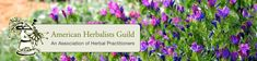 Invaluable collection of onine web resources for herbal medicine and #holistic health, American Herbalist Guild