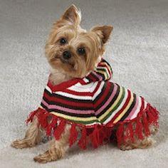 Örgü Köpek Kıyafetleri-Örgü Köpek Kıyafeti Modelleri | orguhobi.com