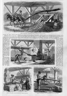 MANUFACTURE OF SUGAR NEGROES GRINDING CANE IN THE MILL BOILING JUICE SYRUP SUGAR | eBay