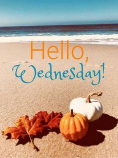 Hello Wednesday Images : hello, wednesday, images, Wednesday, Ideas, Happy, Wednesday,, Quotes