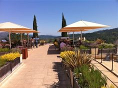 Terrace at Sterling Vineyards in Calistoga,