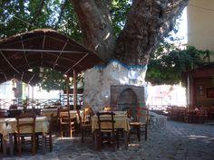 outdoor cafe, lesvos, greece