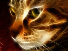 Ver com os olhos da alma inteligente.