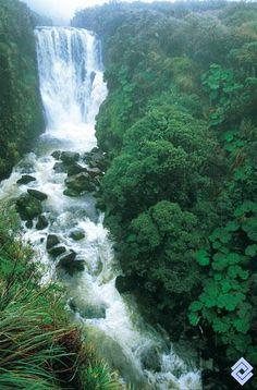 En el Macizo Colombiano nacen los ríos más importantes del país, por lo cual se denomina «Estrella Fluvial Colombiana». Salto de Bedón.  Fotógrafo: Fredy Gómez