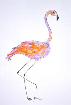 Catchii flamingo illustration