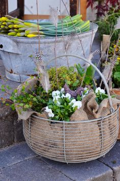burlap lined basket. great idea instead of coco liners