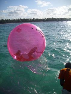 This would be the most fun tubing ride EVER! You cant fall out and can see the water beneath you. Awesome.