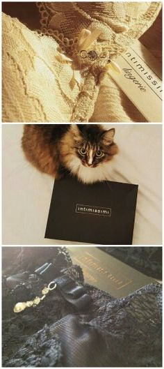 #Intimissimi  #lingerie#madeinitaly#cat#pizzo