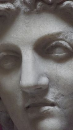 Busto di Dioscuro (metà II secolo d. C.). Firenze, cortile del Palazzo Medici-Riccardi. La testa poggia su un busto moderno, ed è stata restaurata nel novecento in modo erroneo, con l'aggiunta in testa di un improprio berretto frigio