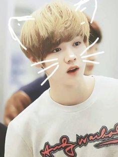 Kyungsoo, Chanyeol, Fighter Of The Destiny, Cute Kids Photography, Wattpad, Chinese Boy, Chanbaek, We Heart It, Small Deer