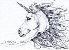 Unicorn Ballpoint Pen Drawing Original ACEO Art by Tanya London  Follow my work on Facebook. www.Facebook.com/TanyaLondon.Art #Unicorn