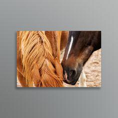 So sweet! Whispering sweet neighs into her ear. Available in both portrait and landscape. Traditional Artwork, Horse Love, Moose Art, Ear, Horses, Fine Art, Art Prints, Landscape, Portrait