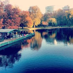 Boston Common during the fall