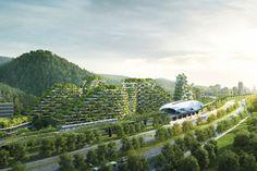 自然と科学の融合。 中国初となる未来型の森林都市とは? | DAYSE