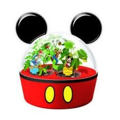 DISNEY MIRACLEGRO Mickey Mouse Greenhouse Vegetable Garden Tomato Sweet Pepper Cucumber >>> Find out more about the great product at the image link.