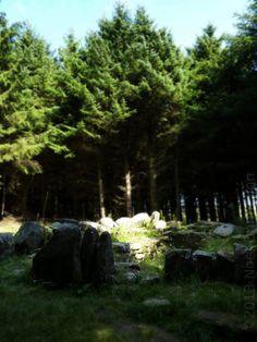 Ballyedmonduff Megalithic Tomb, Co. Dublin, Ireland