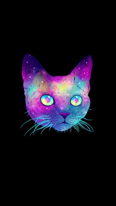 Spaced Kitty