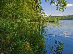 Lütauer See vor den Toren der Eulenspiegelstadt Mölln. Aufgenommen von Thomas Ebelt, www.ebelt-fotografie.de
