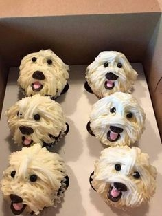 How can you possibly eat these amazing cupcakes? Puppy Cupcakes, Puppy Cake, Animal Cupcakes, Fake Cupcakes, Decorated Cupcakes, Crazy Cakes, Beautiful Cakes, Amazing Cakes, Cupcake Recipes