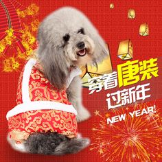 2016 New Year Pet Dog Tang Dynasty Winter  Costume Warm Puppy Clothes Overalls Coat for Small Dog Christmas Costume  #Affiliate