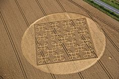 Crop Circle at Cheesefoot Head (1), nr Winchester, Hampshire. Reported 9th August 2012