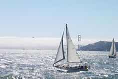 Silicon Sailing is one of the best Marine Surveyors in San Francisco Bay area. If you have even a small amount of love of the ocean and the outdoors, Silicon Sailing provides a memorable and exciting sailing with the best captain. Check out http://www.sfmarinesurvey.com for more information about the services.