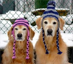 A couple of cuties. Love the hats