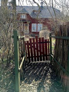 Hannu på Kinnekulle: Min trädgård