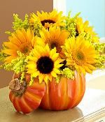 Sunflowers, Gerber Daisies, Golden Rod Pumpkin Arrangement, Fall Wedding Pumpkin Arrangements, Pumpkin Centerpieces, Diy Centerpieces, Sunflower Floral Arrangements, Pumpkin Vase, Sunflower Centerpieces, Pumpkin Flower, Fall Wedding Centerpieces, Wedding Decorations