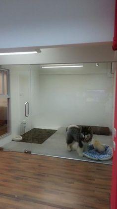 Grooming Space Pet Hotel & Salon