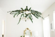Eucalyptus chandelier (embroidery hoop + eucalyptus).