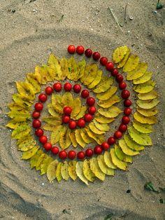Les 4: Laat je inspireren door de spiralen van de varens...