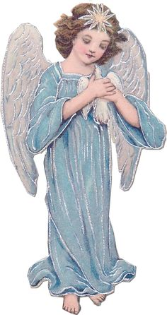 1blue angel tuckdb