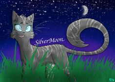 Silvermoon for @breyannalenox ! i hope you like it :D sorry it took so long I've been pretty busy! (not my OC silvermoon, hers. :3 enjoy! pls don't rein without credit! Ty!