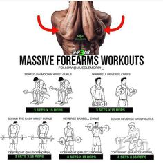 Want to Massive Forearm? 👆Try This Workout and Save it's Very Useful Step Workout, Gym Workout Tips, Workout Videos, Fitness Workouts, Weight Training Workouts, Fitness Tips, Fitness Motivation, Moda Fitness, Daily Motivation