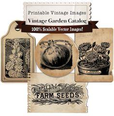 NEW Vintage Garden Seed Catalog Clip Art Collection - 100% Scalable Vector Art. $3.00, via Etsy.